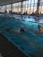 180302_schwimmen1